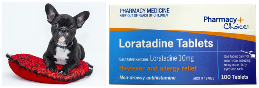Loratadine for Dogs: Uses, Side Effects, and Dosages